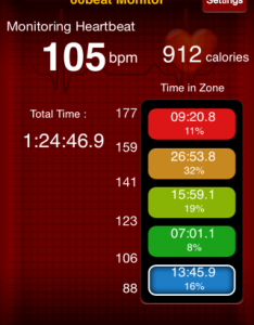 Heart Rate Boxing